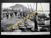 Alicante - Llegada de la pesca por la mañana
