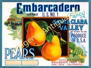 EMBARCADERO BRAND U.S. Nº 1 - PEARS