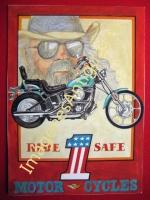 RIDER 1 SAFE MOTOR CYCLES
