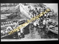 Santurce - Desembarcando la Sardina