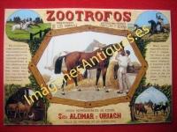 ZOOTROFOS - REGENERADOR DE ANIMALES PARA RAZAS CABALLAR Y BOVINA